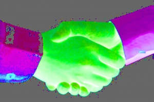 Brauchen wir den Handschlag zwischen Wissenschaftskommunikation und Journalismus? (Foto:  K.Gastmann/ Pixelio)